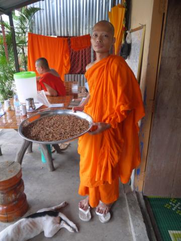 The monks live in a pagoda, practice Buddhism, and some of them are specialized in traditional medicine.